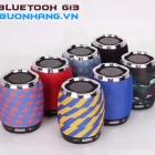 Loa bluetooth G13